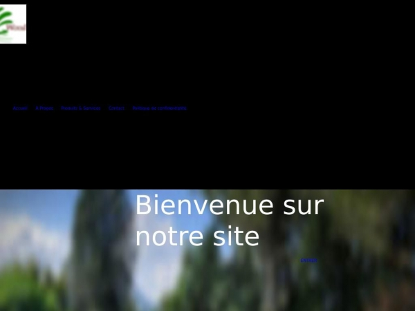 a2vp-06.com