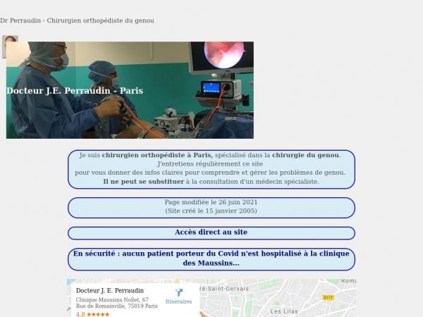 docteurperraudin.com