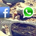Facebook rachète WhatsApp. Ok, mais pourquoi ?