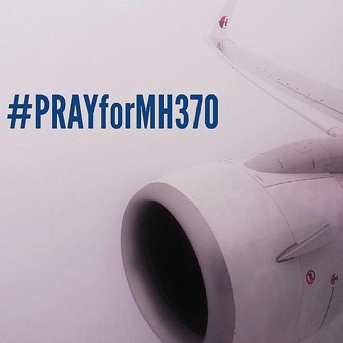 MH370, Internet et les recherches