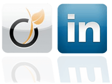 Ce qu'il ne faut pas faire sur Viadeo et Linkedin