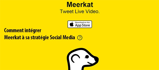 Comment utiliser Meerkat