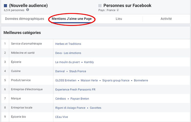 facebook audience insights comment faire