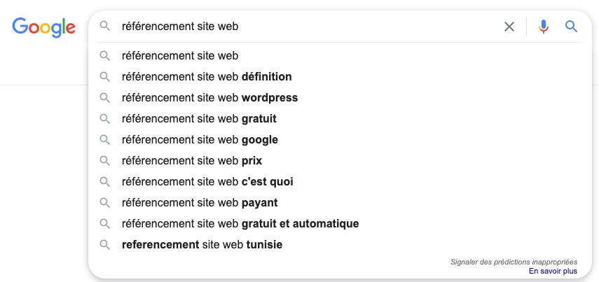 un exemple de suggestion de requêtes dans la barre de recherche